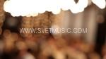 Violinist SVET